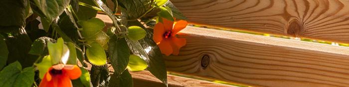 Holz_im_Garten